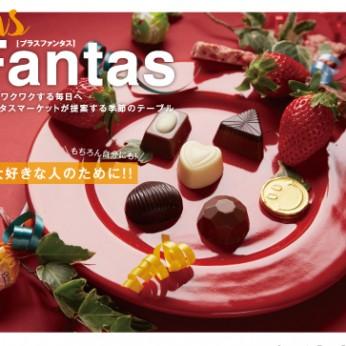 fantas02_omoteCS3