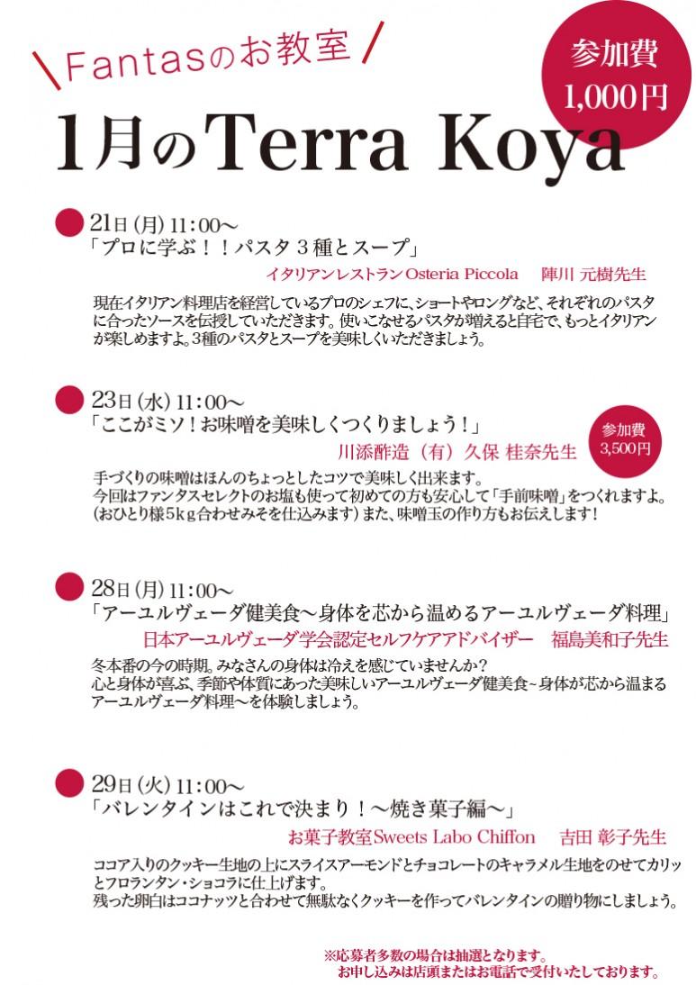 201901Terra koya